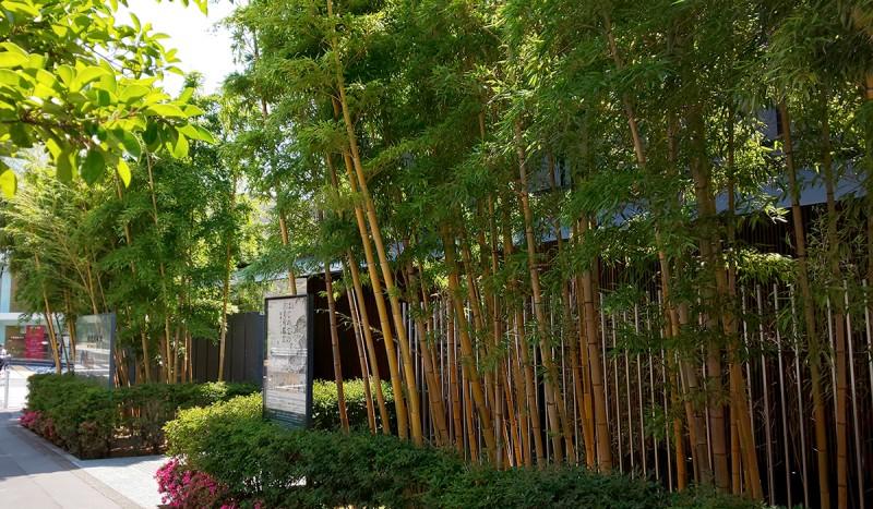 青山 根津美術館